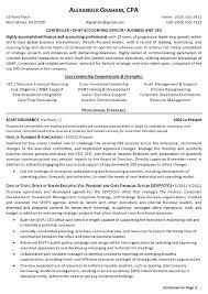 Aaaaeroincus Unique Resume Sample Senior Financial Executive