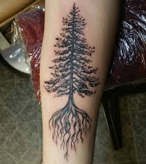 Maple Tree Symbolism by 75 Simple And Easy Pine Tree Tattoo Designs U0026 Meanings 2017
