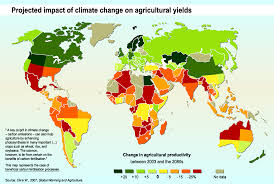 Essay on global climate change and its impact   sludgeport    web     Essay on global climate change and its impact