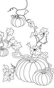 20 thanksgiving coloring pages ideas