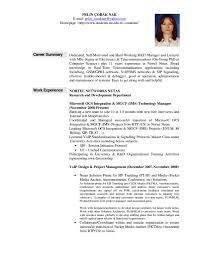 resume achievements examples cover letter sales professional resume profile sales executive sample resume summary job examplesregularmidwesterners and templates in sample 791x1024 large