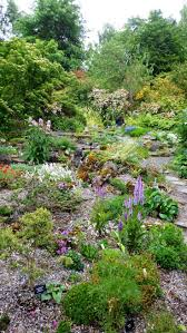 garden rockery ideas 50 best rockery gardens images on pinterest rockery garden