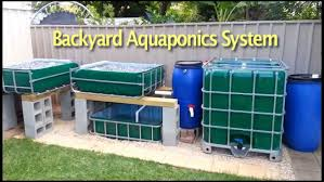Backyard Aquaponics Systems Easy Design And Latest Aquaponics - Backyard aquaponics system design