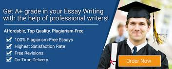 Essay Writers   Professional Essay Writers Australia How Our Professional Essay Writers Can Help You Out