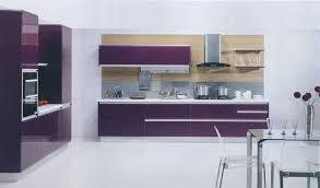Kitchen Trolley Designs by Purple Kitchens Design Ideas Zamp Co