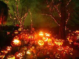 download free pumpkin halloween background wallpaper wiki