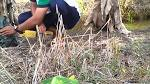 ครืนดักนกกวัก3 0849136883 - YouTube