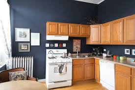 Minimalist Kitchen Cabinets by Kitchen Desaign Midnight Blue Kitchen Cabinets As Blue Kitchen