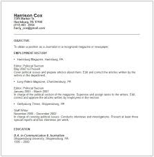 IT Project Manager Resume Example