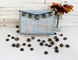 golden acorns