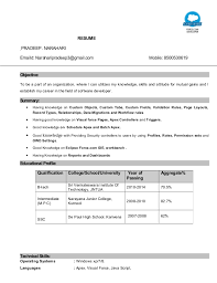 Best Java Developer Resume by Best Solutions Of Sample Salesforce Resume Also Template Gallery