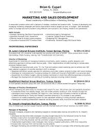 Intern Sample Resume Sample Resume For College Student Seeking     Get Inspired with imagerack us Digital Marketing Resume Digital Marketing Resume Account       digital marketing resume sample