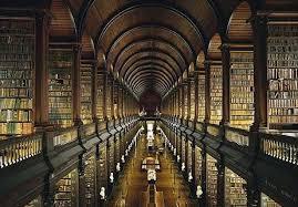 Biblioteca Images?q=tbn:ANd9GcRnDzGtKDbeiwyJOqPfuBgKfS_wB-bqiSpnnF8iJbGLMqQBPKoH
