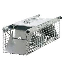 Home Depot Store Hours Houston Tx Havahart Small 2 Door Animal Trap 1025 The Home Depot
