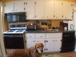 kitchen cabinets captivating kitchen cabinet prices average cost