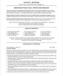 Engineering Manager CV Sample   Curriculum Vitae Builder Job