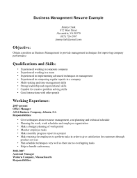 sample of essays professional format for resume give me an example of essay luxury design sample business resume 15 example resume format it professional