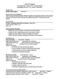 Sample Federal Government Resume by Career Services Sample Resumes