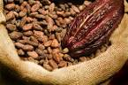 Pronuncia di cocoa