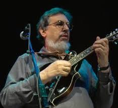 a David Bromberg concert,