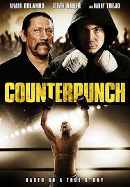 Counterpunch (2013) [Vose]