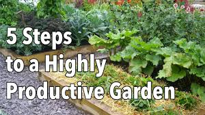 companion vegetable garden layout vegetable gardening how to plan a highly productive garden youtube