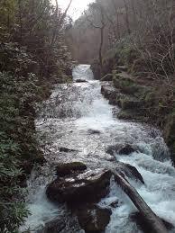 Hoar Oak Water