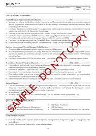 view resume examples executive cv example sales director resume writing format pdf executive cv example sales director