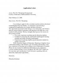 Childhood Education Job Application Cover Letters Program Diploma happytom co