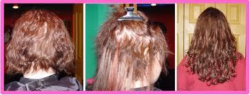Shampoo For Dry Hair And Hair Loss Hair Loss Shampoo Pembroke Pines Stop Hair Loss