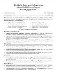 Resume Summary Statement  resume summary statement examples     happytom co