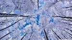 temps de neige - MOTS SOUS LAUBE