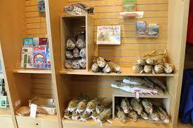 gift shop great lakes aquarium