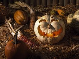 free halloween wallpaper download pumpkin halloween hd wallpaper pixelstalk net