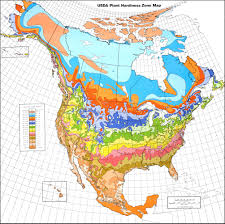 Time Zone Map United States by Map Downloads Usda Plant Hardiness Zone Map