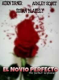 El novio perfecto (2013)