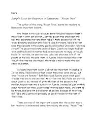 essay description of a person english essay writing examples Essay Writing In English With Example English Essay