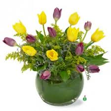 Flowers Winchester - tulips flower delivery in winchester kathryn u0027s florist u0026 gifts