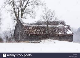 Gambrel Roof Snow Falling Around Weathered Barn With Rusted Metal Gambrel Roof