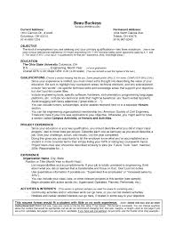 Junior Accountant Resume Sample by Sample Resume Of Information Technology Student