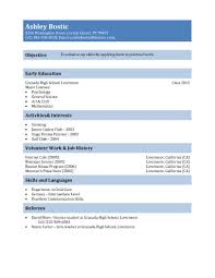 resume examples for high school students       in