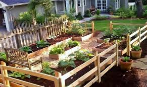 starting your family vegetable garden redeem your ground rygblog