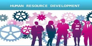 Effectiveness of Human Resource Management in Improving Performance What value does the human resource  HR  function contribute to the bottom line of the