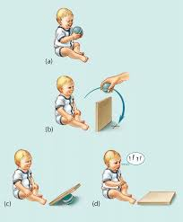 mcentropic   Jean Piaget     s Stages of Cognitive Development