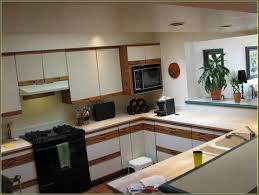 laminate kitchen cabinets plastic kitchen cabinet laminate