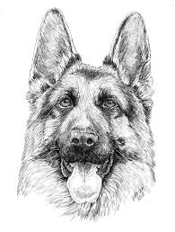 cartoon german shepherd puppy coloring page coloring pages for