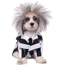 halloween accessories dog costumes u0026 halloween accessories for your pets
