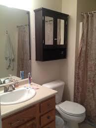 floating black wooden cabinet having double doors with mirror