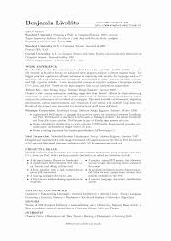 CV Profile of IT project Manager soymujer co