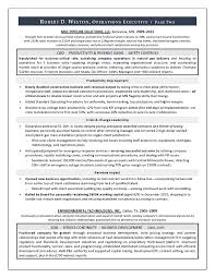Best Executive Resume Writer   Sample Resume COO  amp  GM   Resume     What makes my COO resume writing the best choice for your leadership resume needs